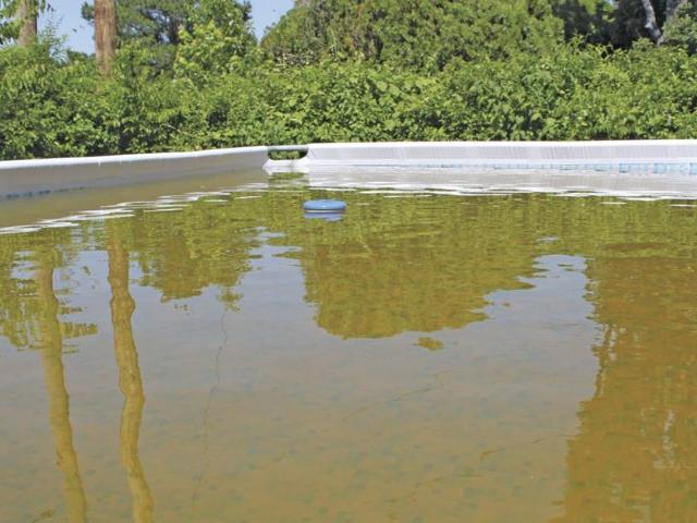 Brązowa woda w basenie